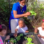 CHILD Center students stand around a raised garden bed with plants growing in it.